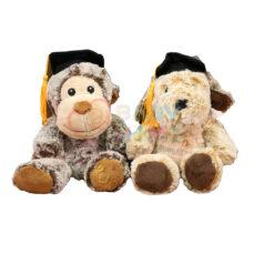 عروسک حیوانات دانشجو